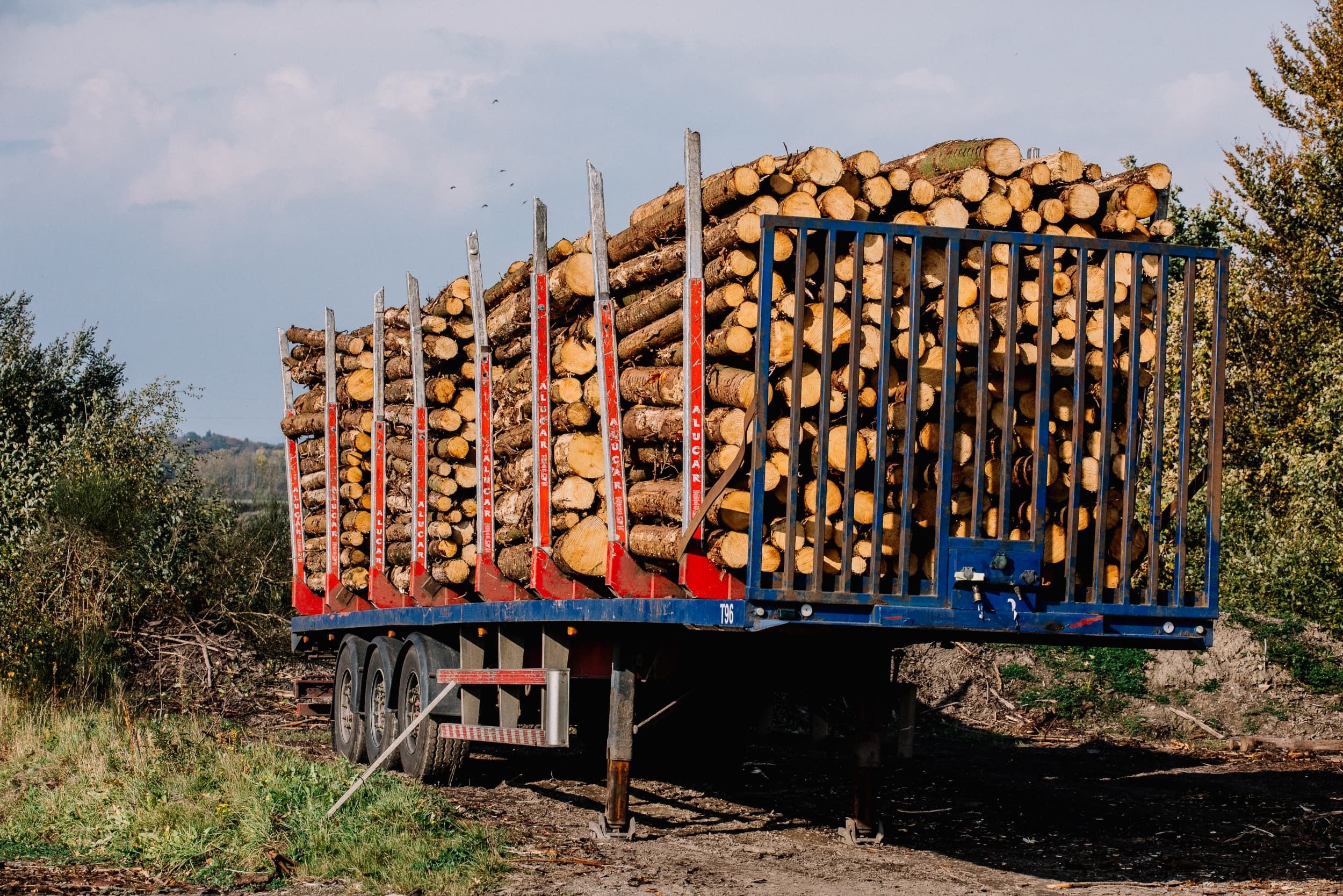 Self-Employed Forestry Venture Financed